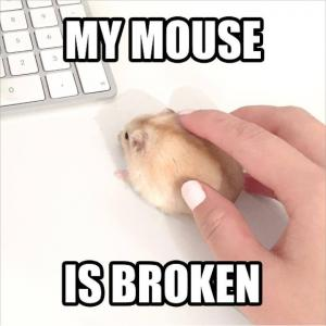 My mouse is broken