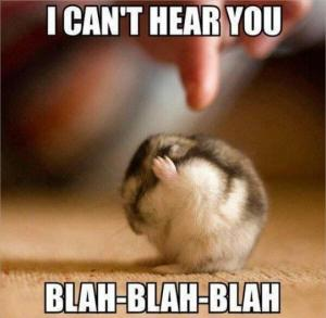 I can't hear you. Blah blah blah.
