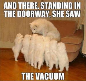 And there standing in the doorway, she saw the vacuum