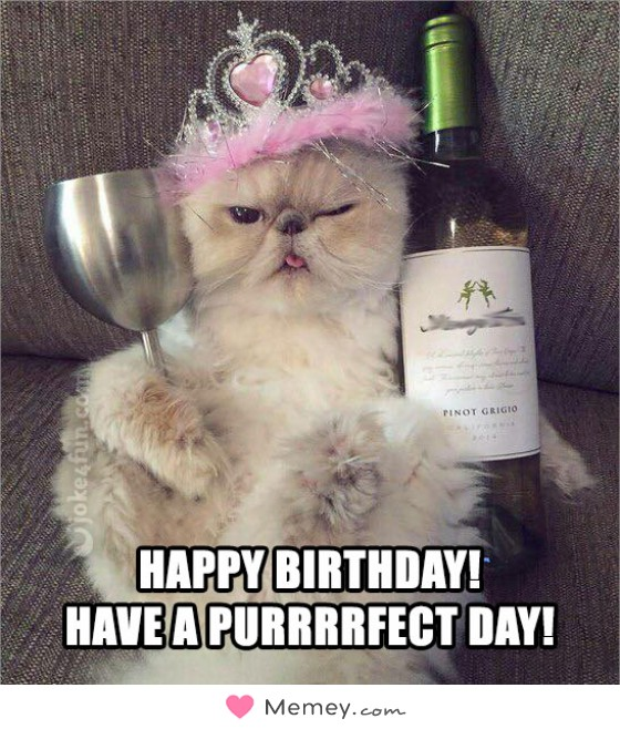 Happy Birthday! Have a purrrrfect day!