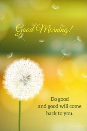 Good morning! Do good and good will come back to you.