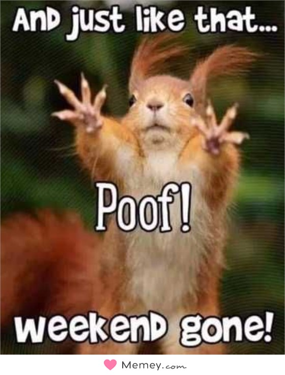 And just like that.. Poof! Weekend gone!