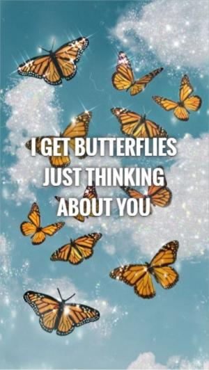 I get butterflies just thinking about you